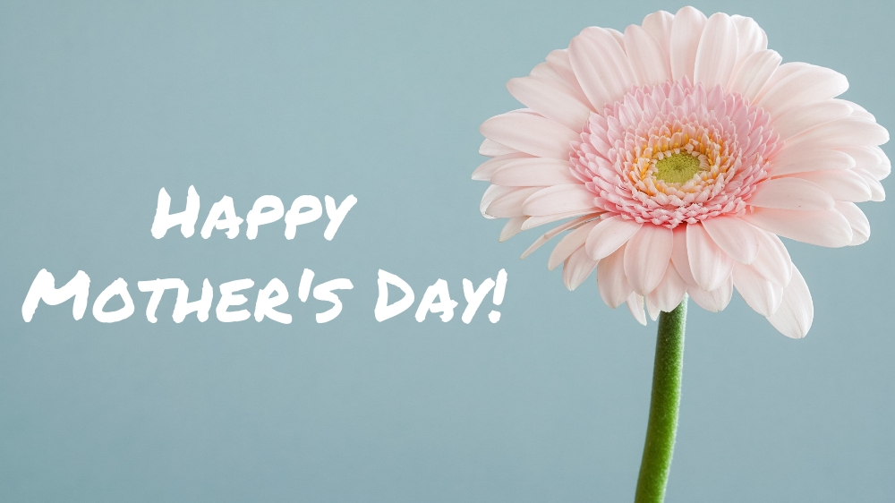 "Excellent.Org: Flower and a text: ""happy mothers day"""